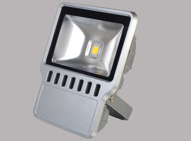 LED Light 100W