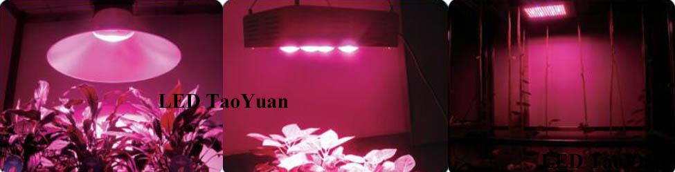 UV Grow Light-5 - Click Image to Close